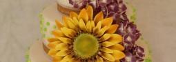 Sunflower/hydrangea cake